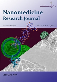Nanomedicine Research Journal